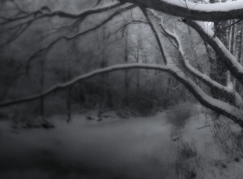 Ein dunkler Winter wird vorhergesagt: Der wahre Plan ist ein dunkles Jahr, ein dunkles Jahrzehnt, ein dunkles Jahrhundert