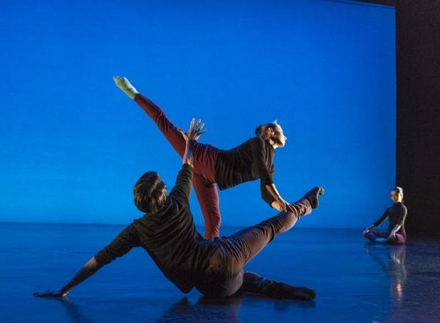 Tessellations - Shayla Hutton & Sergio Arranz arabesque