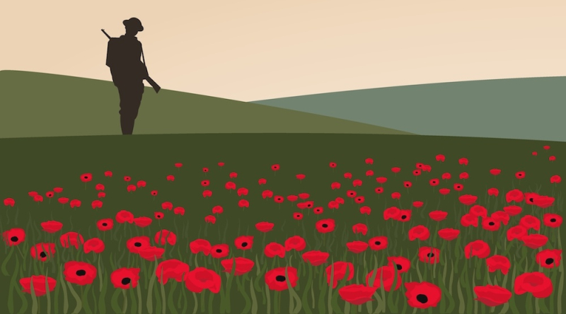 Flanders-fields-poppies-remembrance-day